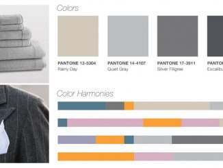pantone color report-gray