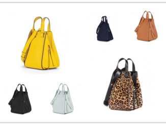 Loewe Hammock Bag Collection