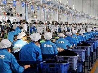 SBS Zipper Production Line