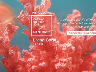 Living Coral: Pantone Color of the Year 2019