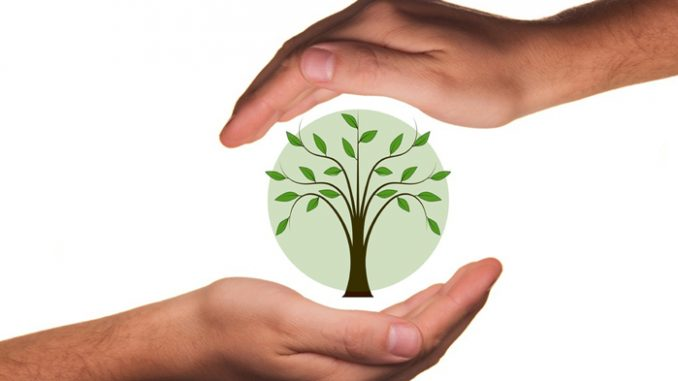 SBS is Listed As Fujian Green Factory Demonstration Enterprise