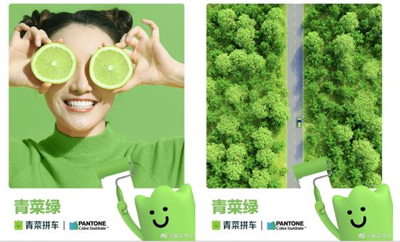 environmental color QingCai Green2 生活中的绿2