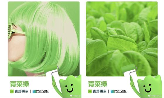 environmental color QingCai Green4 生活中的绿4